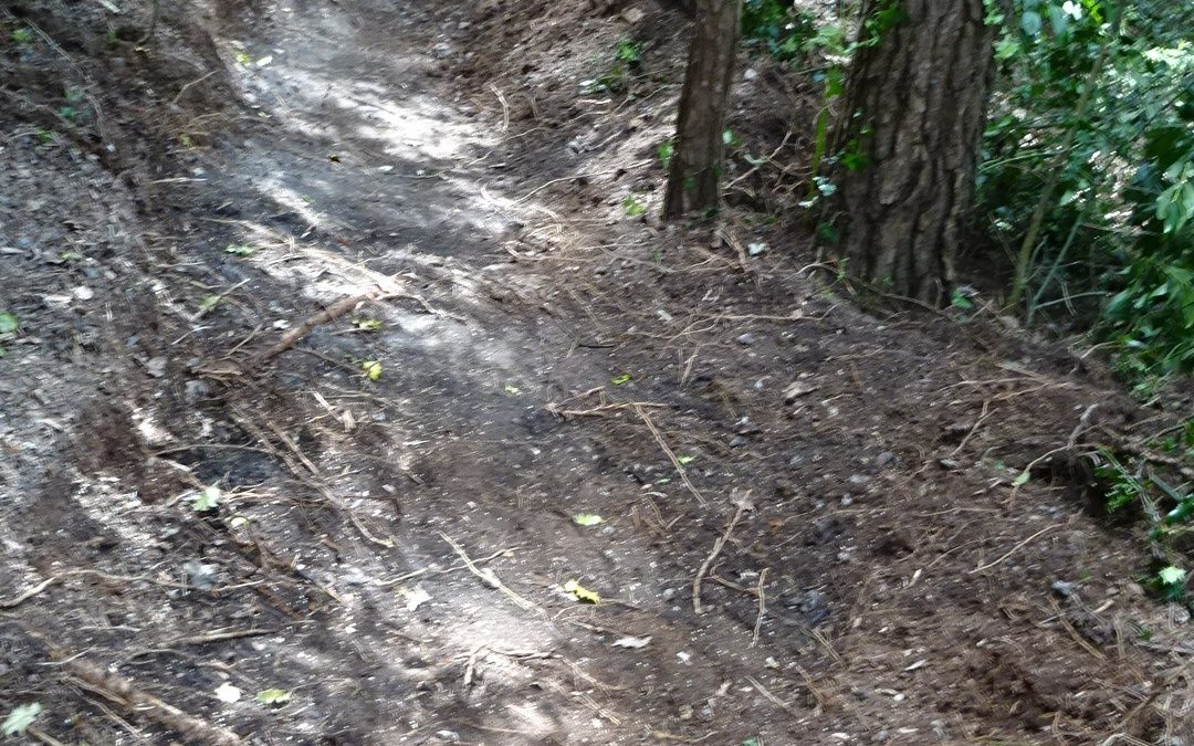 Update on the Unauthorised BMX Trail